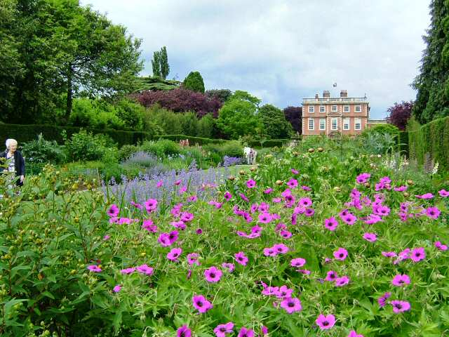 The double herbaceous borders at Newby form a central axis to the gardens and run down from Newby Hall to the River Ure, bisecting the 25 acres of gardens.