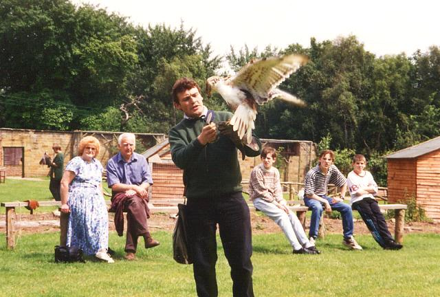 Sion Hill Hall Birds of Prey