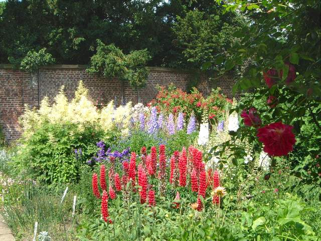 elizabethan garden burton agnes