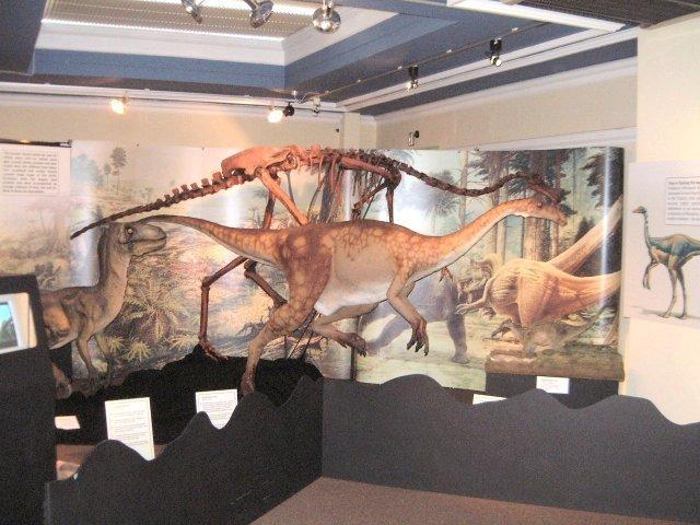 Yorkshire Museum Dinosaurs