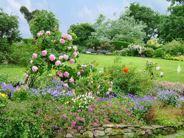 Shandy Hall Front Garden